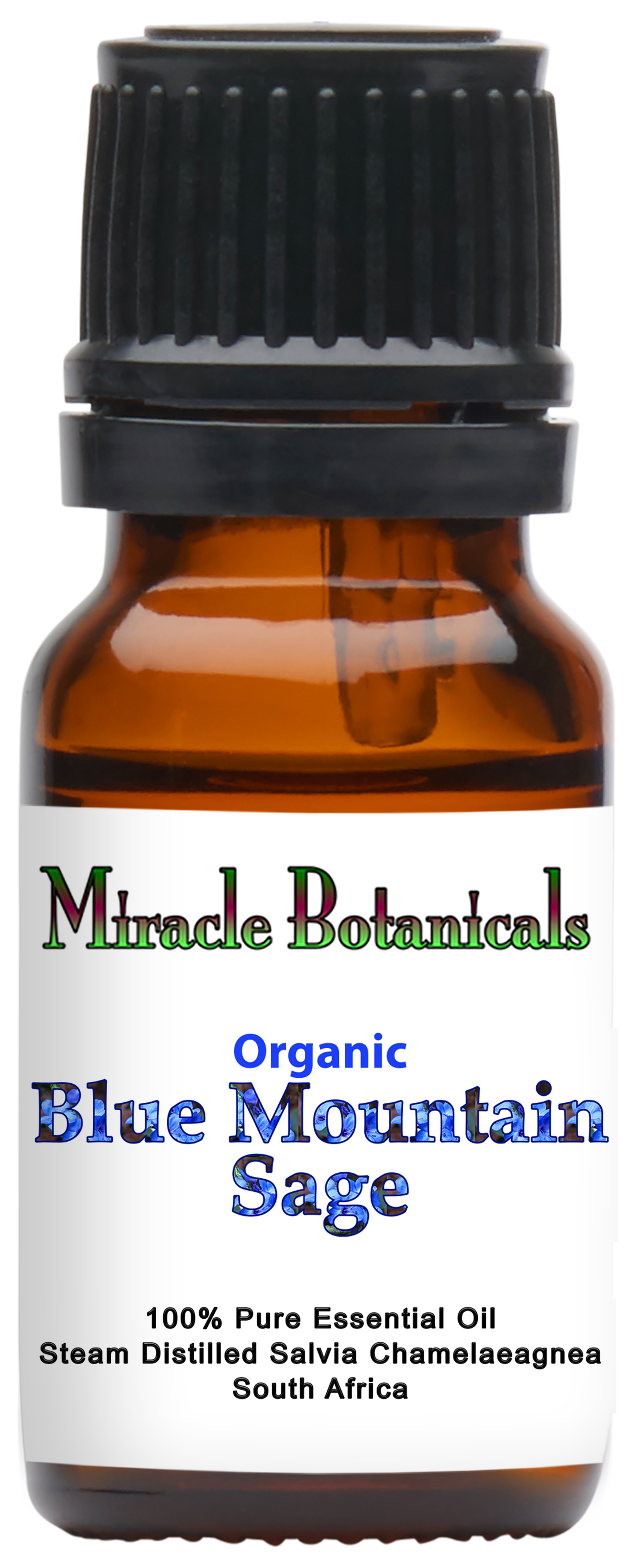 Blue Mountain Sage Essential Oil - Organic