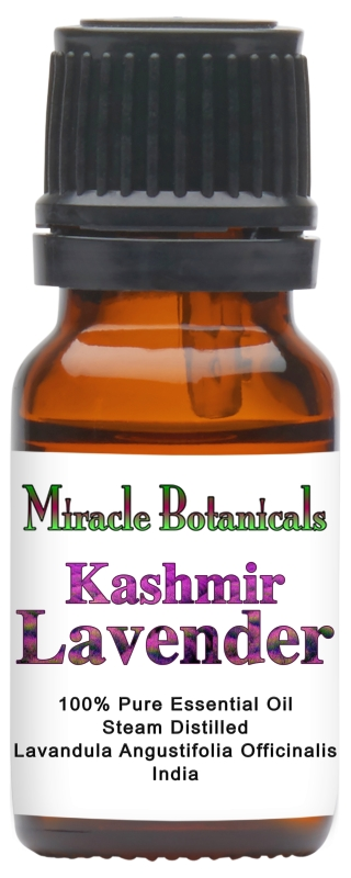Lavender (Kashmir) Essential Oil