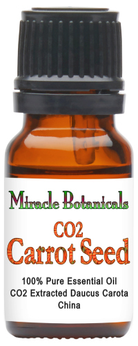 Carrot Seed Essential Oil - CO2 Extracted