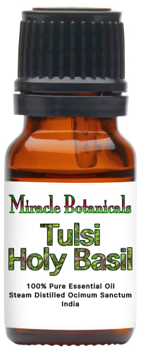 Basil (Tulsi, Holy) Essential Oil
